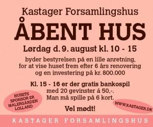 Aabenhus2014